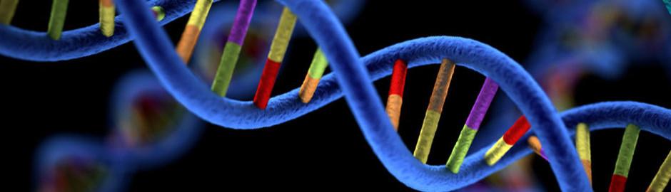 genetics_page_art